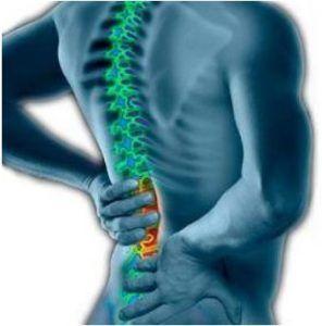 http://www.pastiherbal.com/definisi-gejala-dan-penyebab-sakit-punggung/