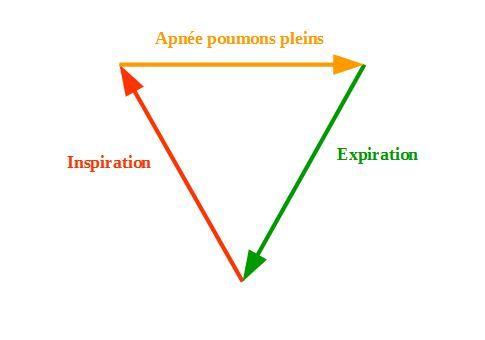 La respiration en triangle est un exercice facile à faire qui permet selon les cas de s'apaiser ou de se dynamiser : démonstration.