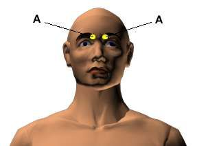 Acupressure Points for Relieving Neck Tension