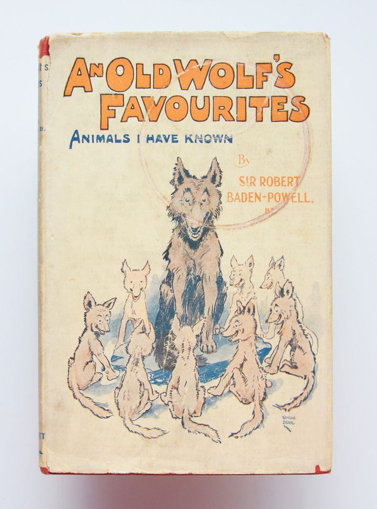 An Old Wolf's Favourites : Animals I Have Known By Sir. Robert Baden-powell, Bt.