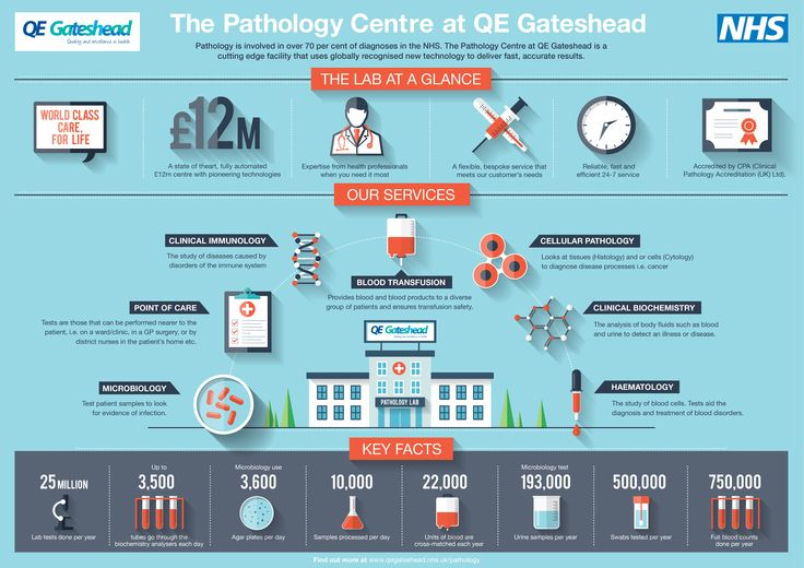 Pathology lab stats from QE Gateshead's world class pathology lab in north east england.