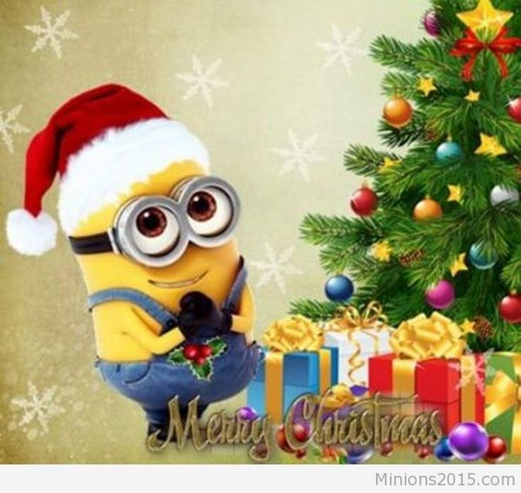 Image result for Christmas Minions
