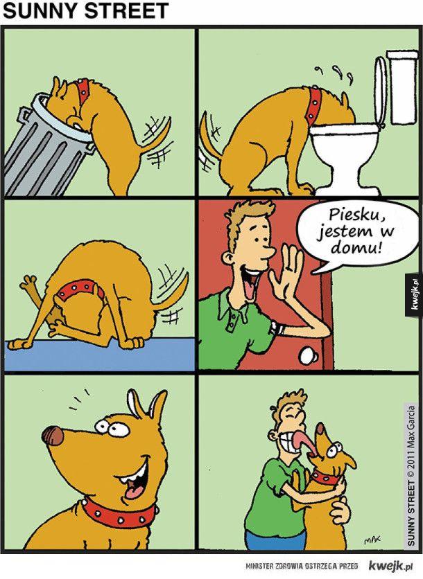 Komiksy Maxa Garcii