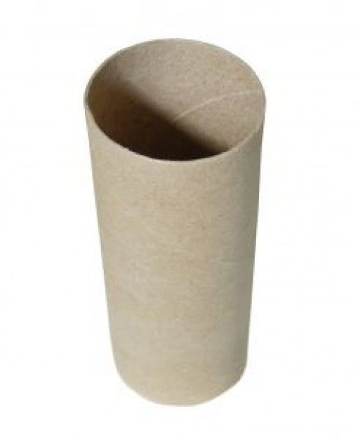 101 best images about 1001 things to do with empty toilet for Things to make with toilet paper rolls