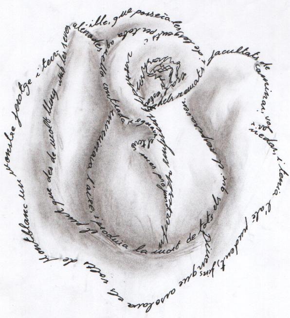 caligrama rosa