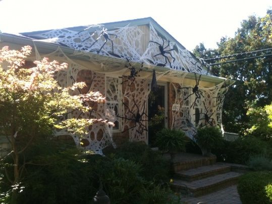 Took advantage of the great weather to get all the webs and spiders up. Webs are beef netting from here:  http://www.trentonmills.com/halloween_spiderwebs.htmSpiders from Walgreens.