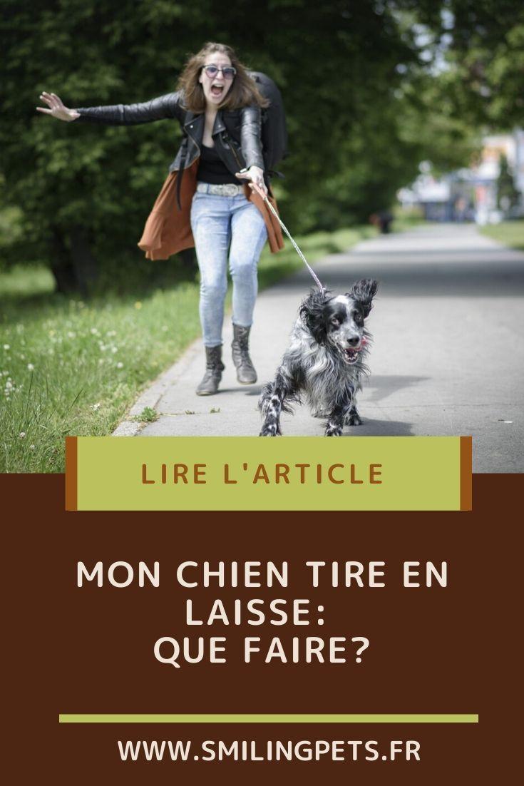 Mon Chien Tire En Laisse : chien, laisse, Épinglé, BLOGS, FRENCH