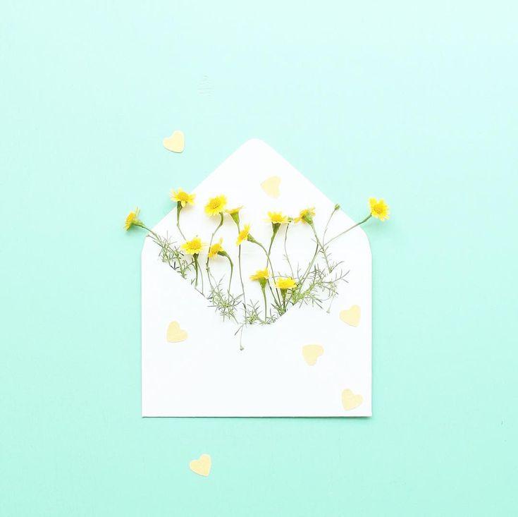 Sanatlı Bi Blog Çiçeğin Dünyayı Güzelleştirdiğinin Kanıtı Niteliğinde 30 Sevimli Fotoğraf 24