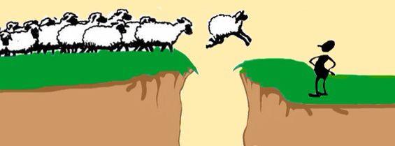 Als er een schaap over de dam is, volgen er meer -- Als één persoon iets nieuws geprobeerd heeft, durven anderen ook wel.