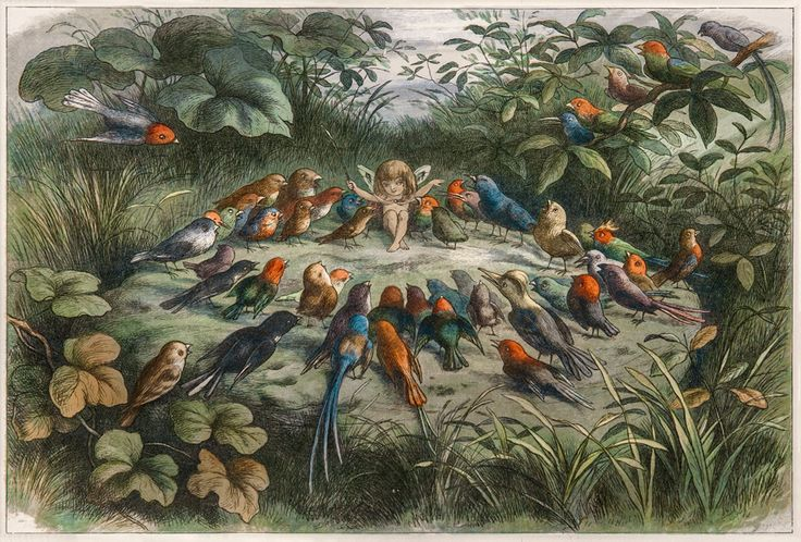 The Antiquarium - Antique Print & Map Gallery - Richard Doyle - Rehearsal in Fairy Land - Color engraving