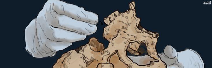 Antropología forense, ciencia para un país de barbarie donde la verdad nunca se sabe