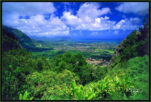 how to get to pali lookout