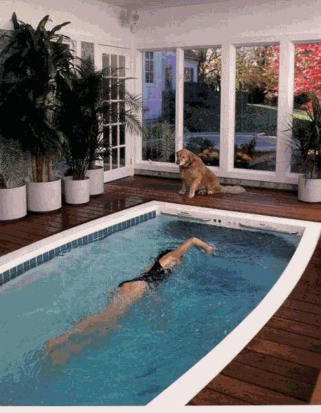 27 best dream home images on pinterest future house for - How much is an endless pool swim spa ...