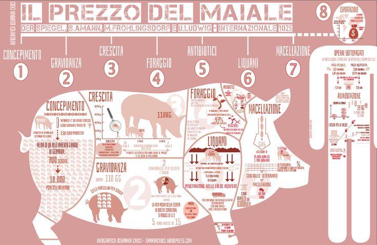 Quanto c'é da sapere su quello che mangiamo! Chi paga il prezzo di una carne cosí economica? #maiale #carne #industria #infografica