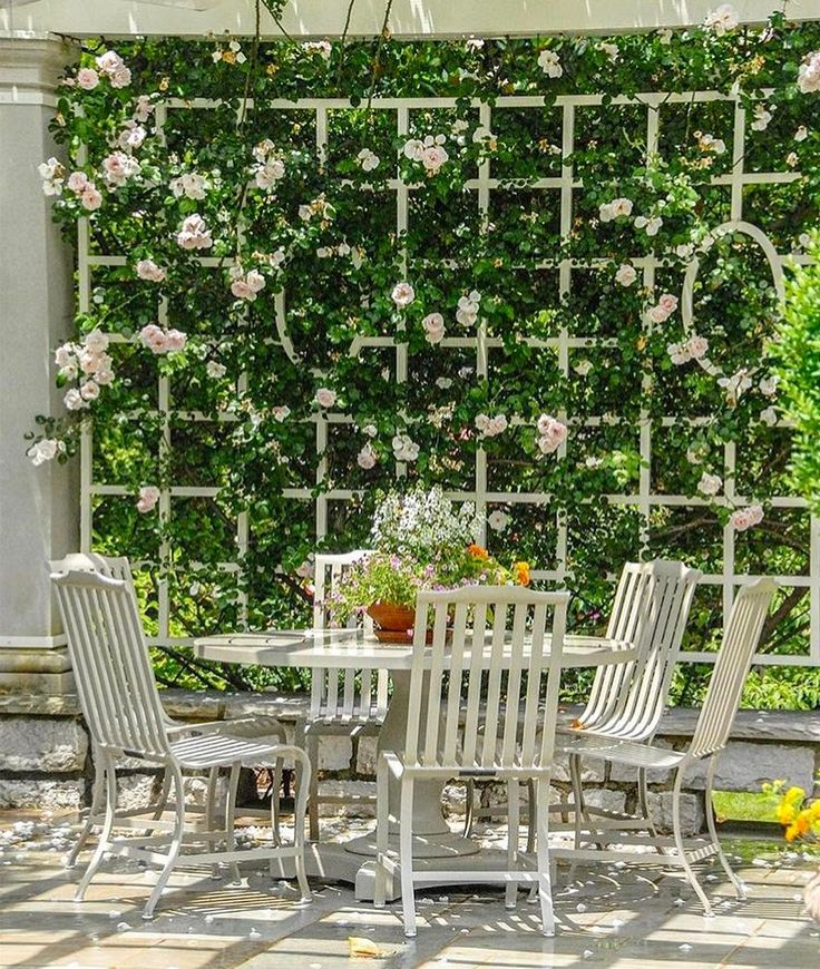 A Softer Garden Trellis As A Wall Instead Of A Hedge