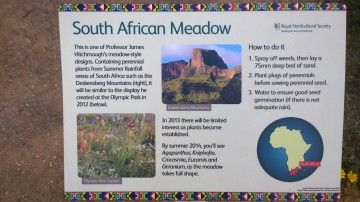 What the SA meadow at Wisley should have in it...