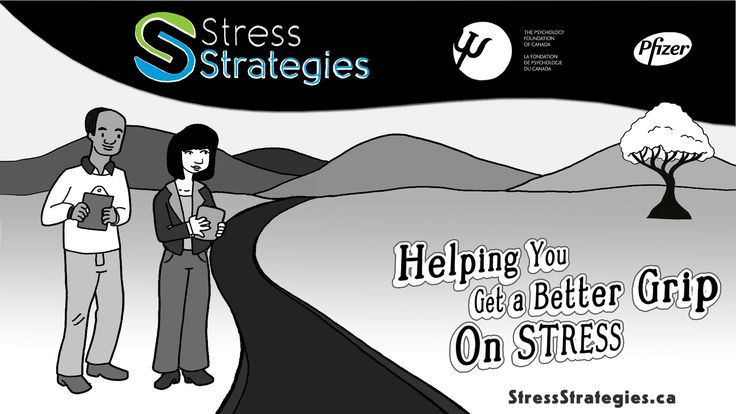 What is Stress Strategies?
