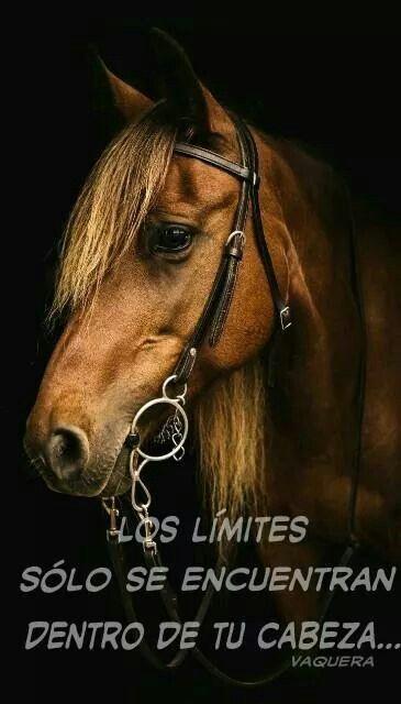 Los límites solo se encuentran dentro de tu cabeza...