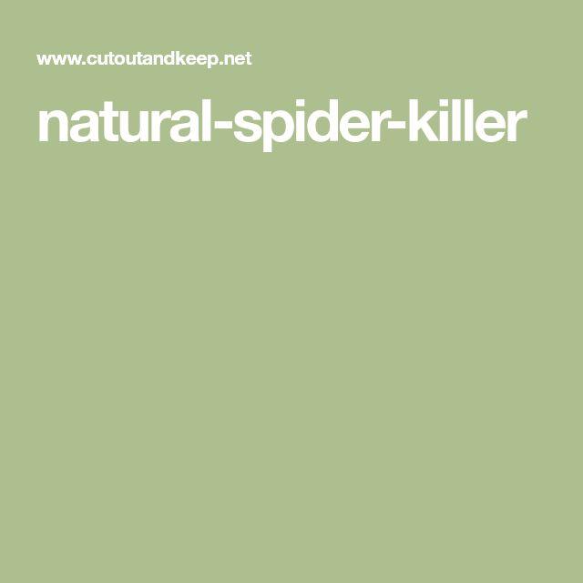 natural-spider-killer