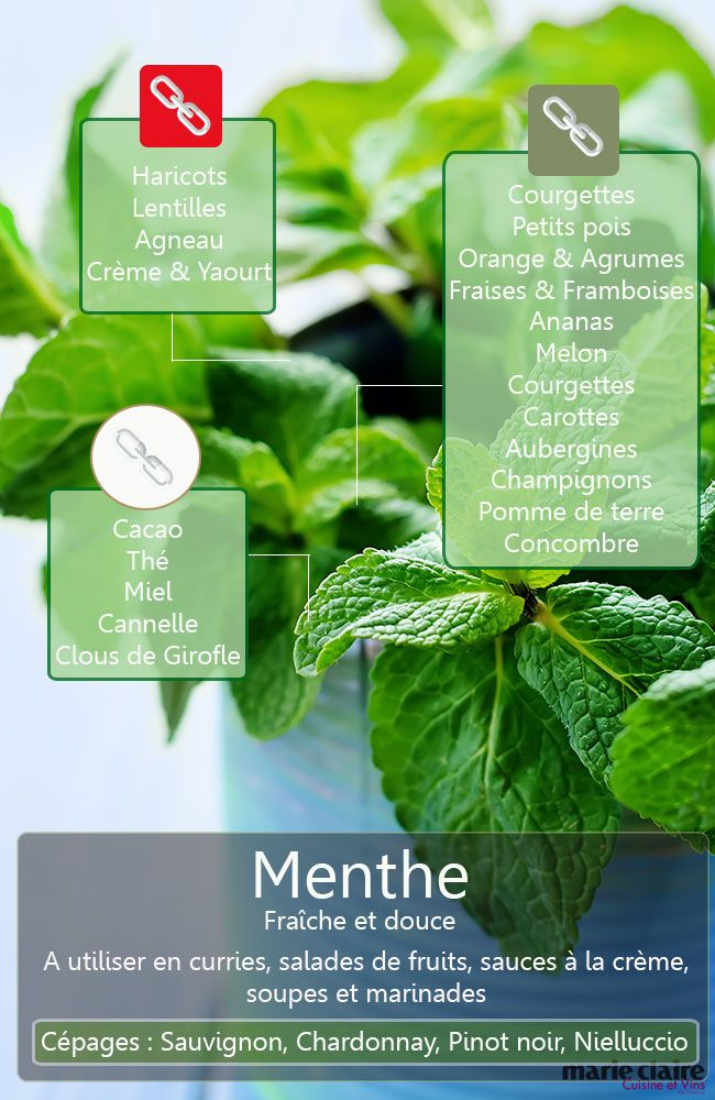 Saurez-vous énumérer tous les ingrédients qui se marient bien à la menthe ?