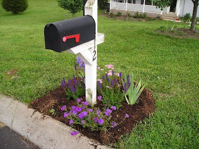 Mailbox garden using drought tolerant hardy perennials to create a low-maintenance garden.
