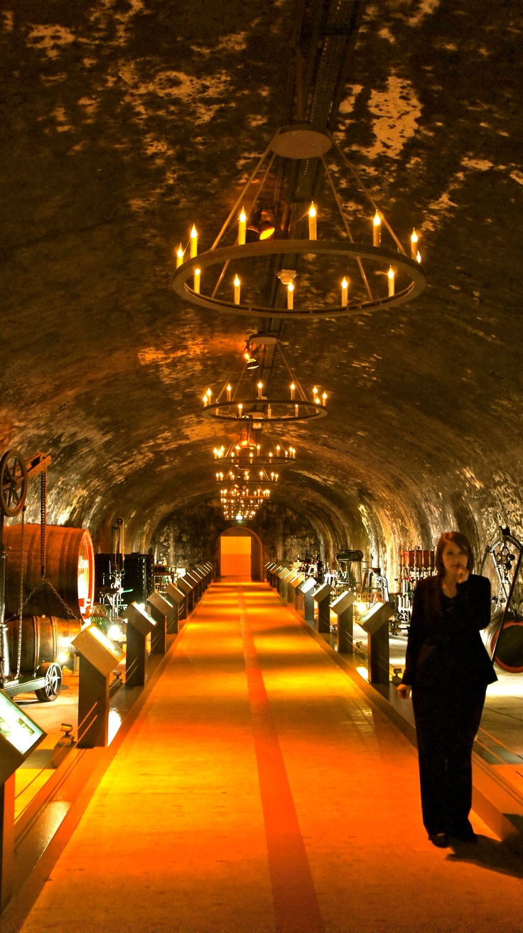 Mumm Champagne House tour. Experiencing the making of champagne and having dinner in the caves is an amazing experience. Put it on your bucket list!
