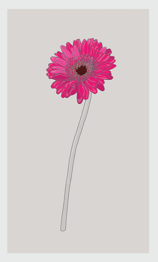 Flores on Behance