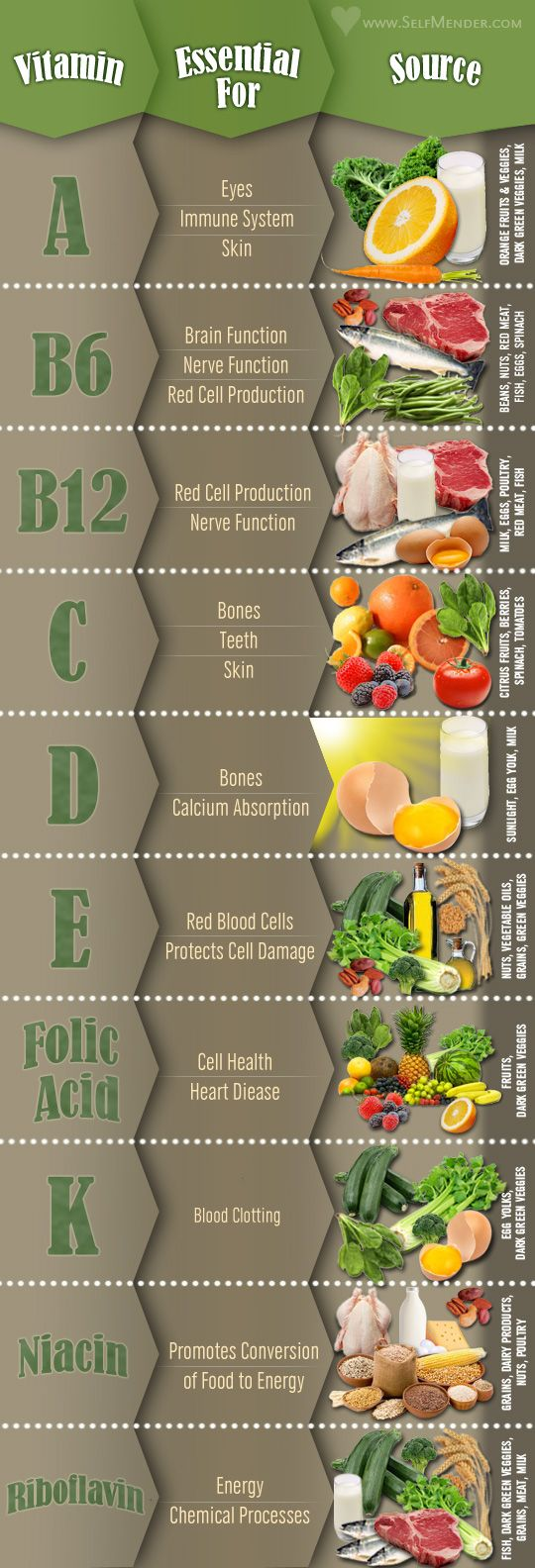 Food with vitamins, what they are essential for and a photo visual of the food source