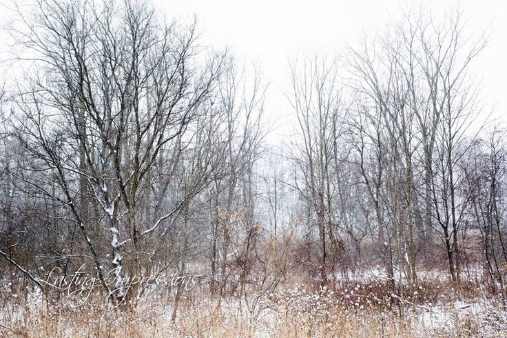 Winter photography by Helen Mels of Lasting Impressions
