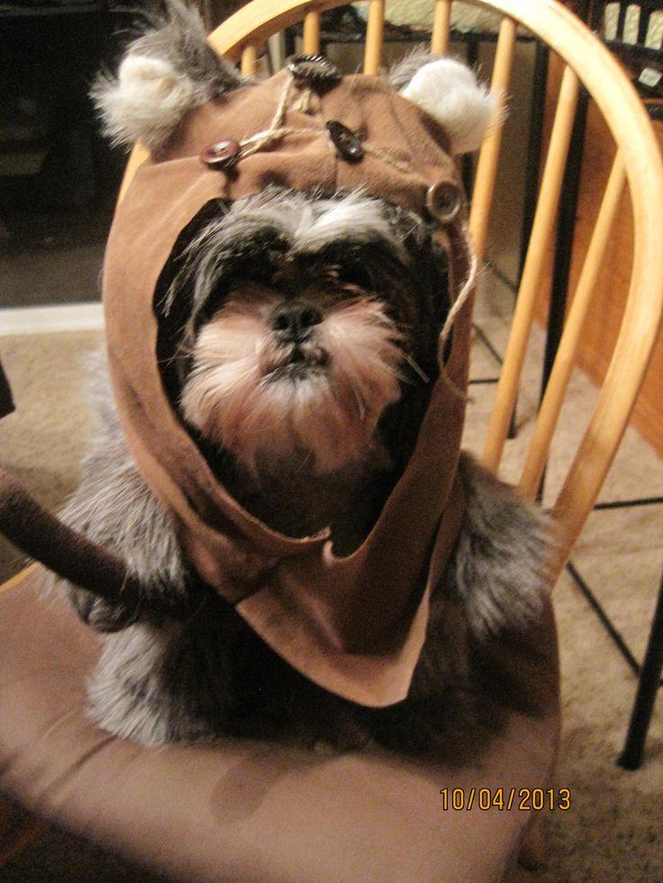 Ewok Hood/Fur Dog Halloween Costume Size Large. $39.99, via Etsy.
