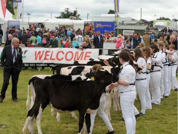 Young Handlers line up in teh Dairy Class at the Tullamore Show & AIB National Livestock Show (2015)