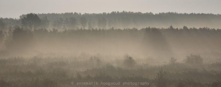 oostvaardersplassen, flevoland, © annemarie hoogwoud photography