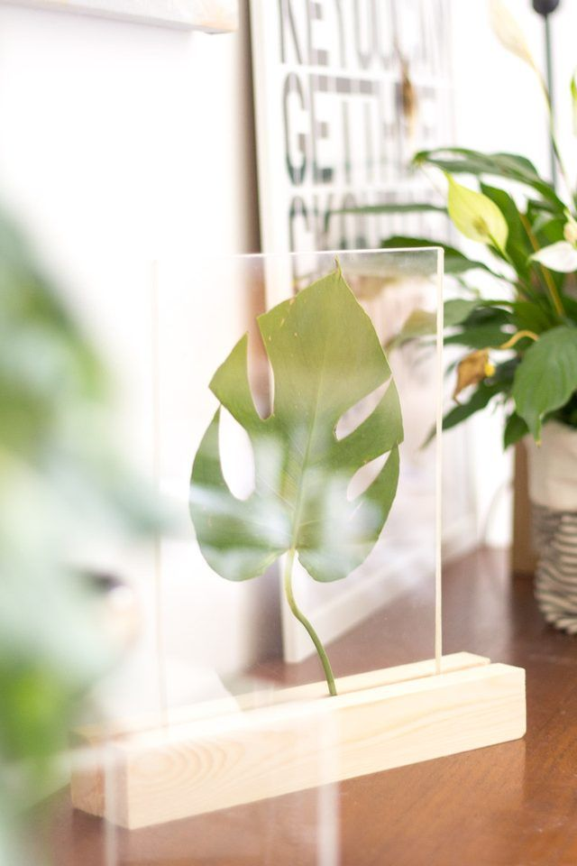 DIY Plexiglass pressed leaf