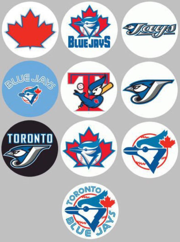 Lots of Toronto Blue Jays pins covering decades of the team's logos.