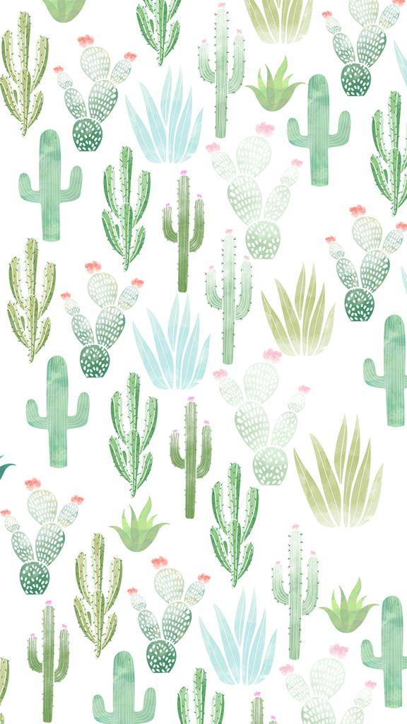 All-cactus.png - Box