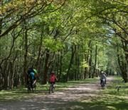 cyclists on the old railway