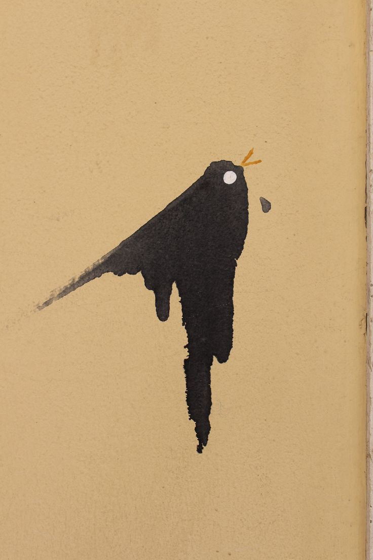 Bird on wall in Lisbon. July 2014