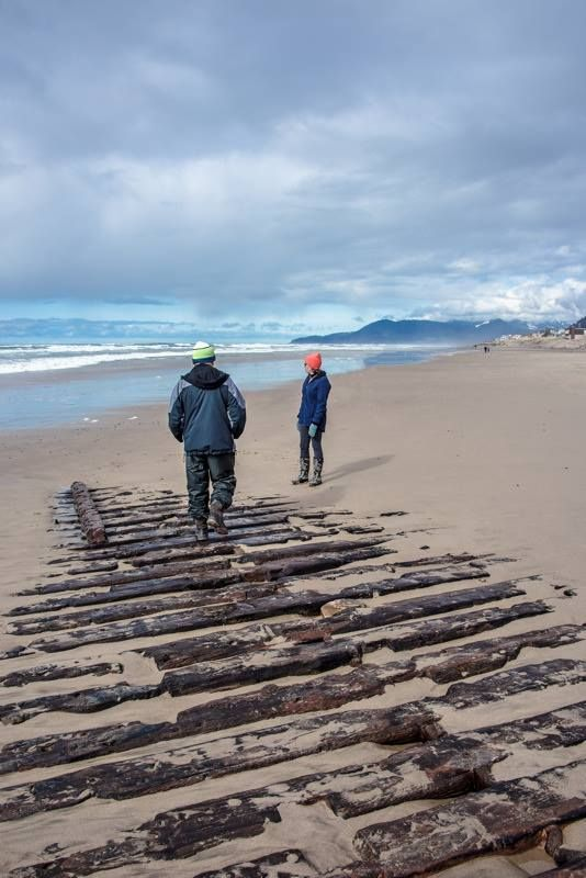 Emily G Reed Shipwreck in Rockaway Beach