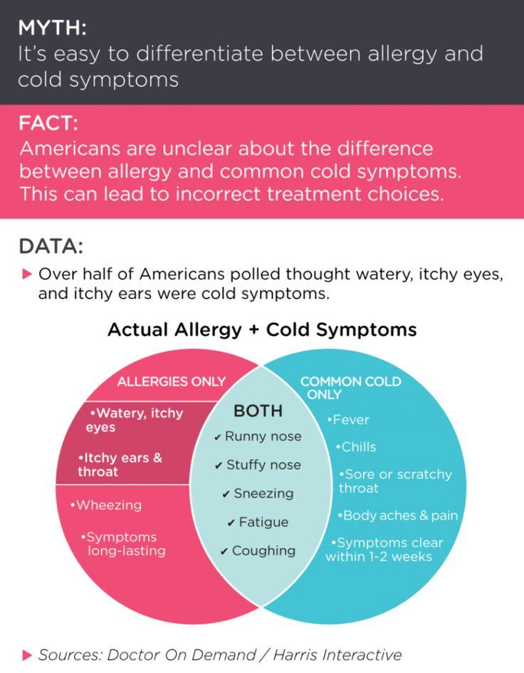 as 25 melhores ideias de allergies sore throat no pinterest, Skeleton