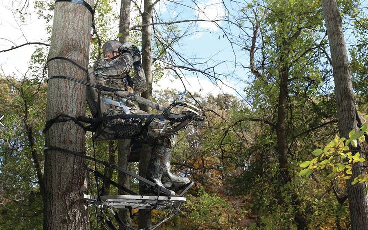 Best Climbing Tree Stand Reviews for 2017