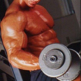 Ganzkörpertraining zum Muskelaufbau