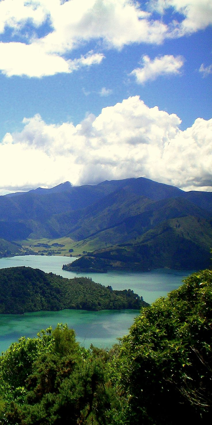 Onahau Lookout along the Queen Charlotte Track - Marlborough Sounds, South Island, New Zealand