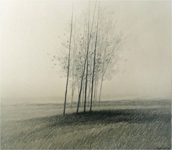 """""""Trees Before Trees""""  - Drawing by Robert Kipniss"""