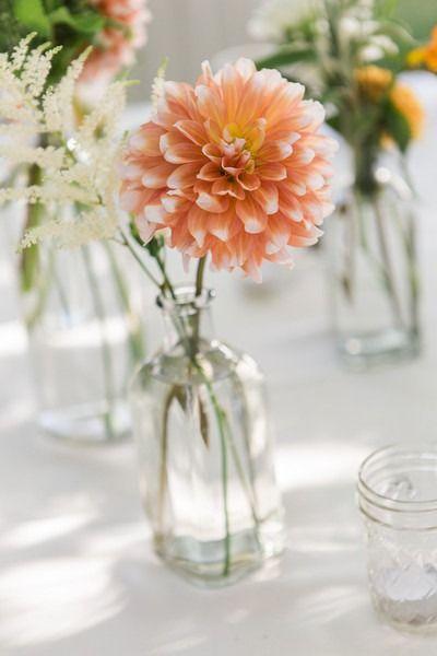 Simple wedding centerpiece idea - peach dahlia in glass vessel {Jennifer Clapp Photography}