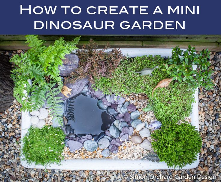 Create your own mini dinosaur garden. Hours of fun for little explorers! This…