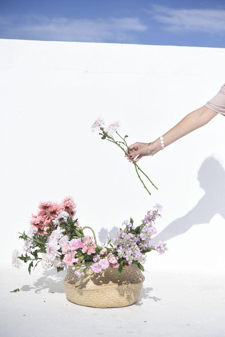 Flores  | Revista Tigris#flores#flowers#flowersofinstagram#flowerlovers#mejorconflores#ramos#ramosdeflores#stilllifegallery  #flowerstagram #revistatigris #tigrison #eidicoencasa #eidico #vivieidico Flowers, Plants, Flower Parts, Floral Foam, Staging, Sunflowers, Growing Up, Bouquets, Floral Arrangements