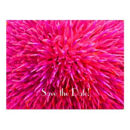 #savethedate #postcards - #Save the Date 90th Birthday Party Pink Abstract Postcard