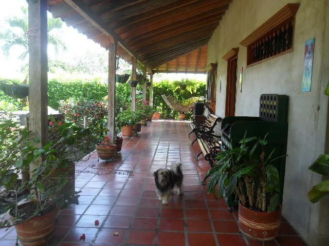 28 best casas lindas images on pinterest house porch - Decoracion terrazas ...