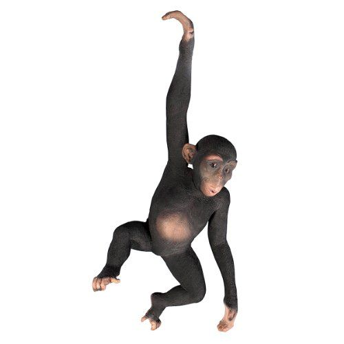 Design Toscano Hanging Jungle Monkey Statue *** Details can be found by clicking on the image.