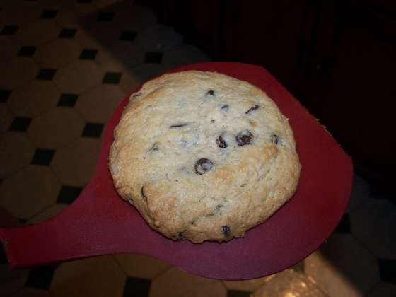 A recipe for a SINGLE chocolate chip cookie - when you just need one.  These are FANTASTIC!